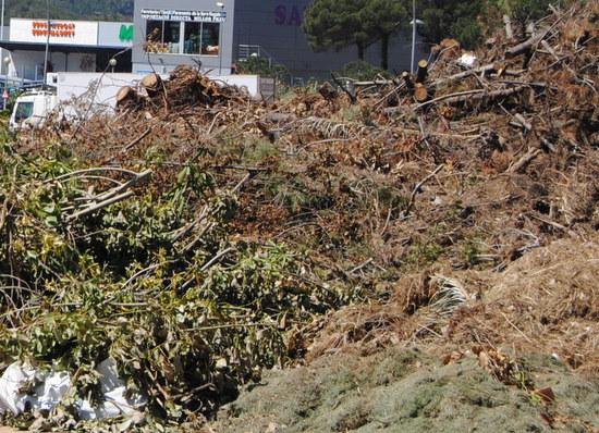 L'Ajuntament permetrà recollir la llenya dipositada a l'entrada de Sant Feliu