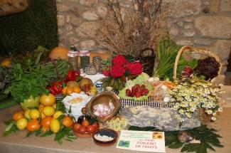 Castell d´Aro celebra la festa de Sant Isidre Llaurador
