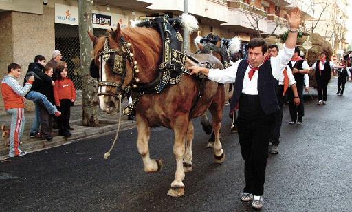 XVI Festa de Sant Antoni Abat – 6 de febrer de 2011