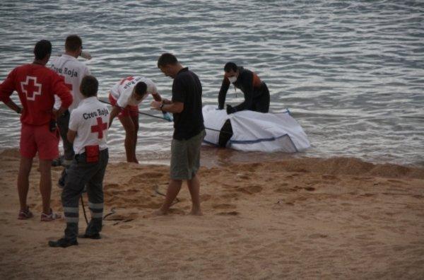 Trobada morta una cria de catxalot a Sant Feliu de Guíxols