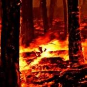 Jutgen el piròman que va provocar un incendi entre Sant Feliu i Sta. Cristina el 2010
