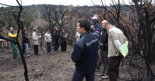 El 30% de franges contra els focs a l'Ardenya, pendents