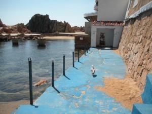 Dissabte, ocupació pacífica al Club de Mar de SFG