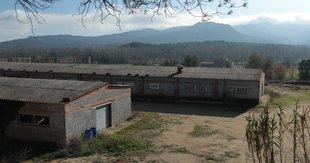 Els veïns recelen d'una granja amb capacitat per a 35.000 gallines a Solius
