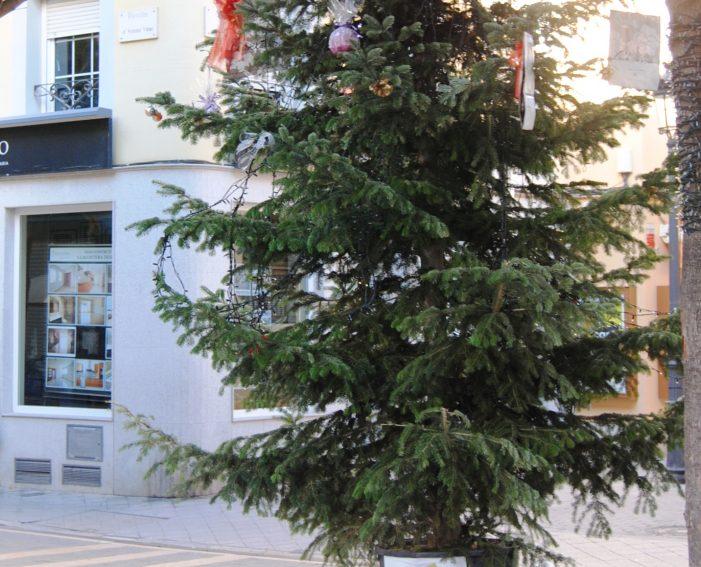 L´Ajuntament recull i recicla els arbres de Nadal