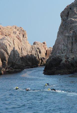 Palafrugell i Sant Feliu obren canals per nedar arran de costa