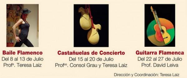 Cursos d'Estiu de flamenc,castanyoles i guitarra