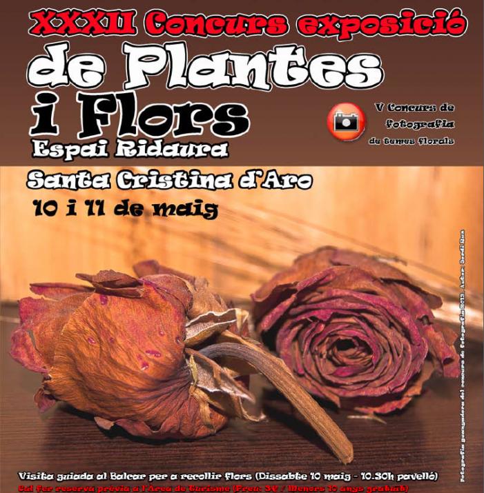 Concurs exposició de plantes i flors 2014