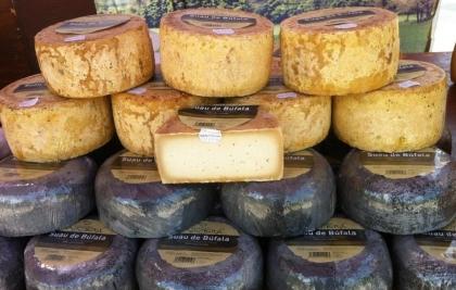 Mercat del vi i el formatge • Diumenge 20 de juliol