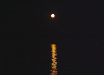 Caminada Nocturna de S'Agaró Vell • 12 de juliol