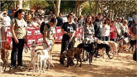 Èxit de públic a la desfilada canina de Sant Feliu de Guíxols