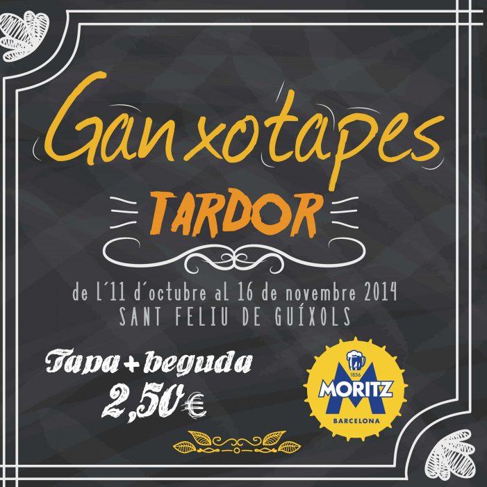GANXOTAPES TARDOR 2014