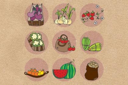 Cursos d'alimentació natural 2014-2015