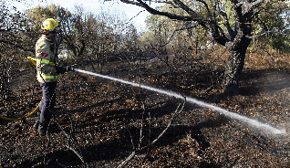 Cremen 2.200 m2 de vegetació a la zona del Pinell a Platja d´Aro