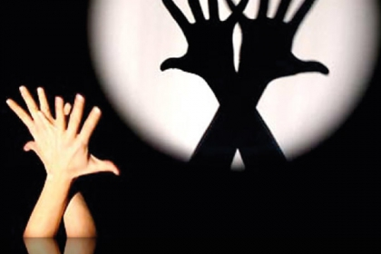 Taller i teatre infantil d'ombres xineses