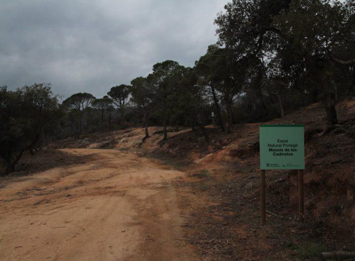 Feines forestals a Sant Feliu contra incendis a l'Ardenya