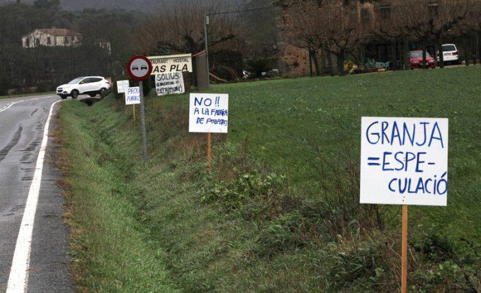 El govern de Santa Cristina dona permís d'obres a la granja d'engreix de Solius