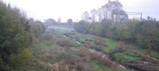 L'ACA neteja de vegetació un tram de la llera del riu Ridaura