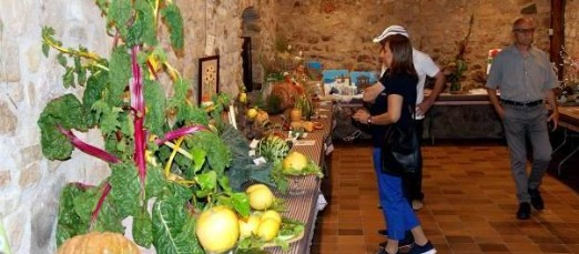 Castell d'Aro celebra la Festa de Sant Isidre Llaurador