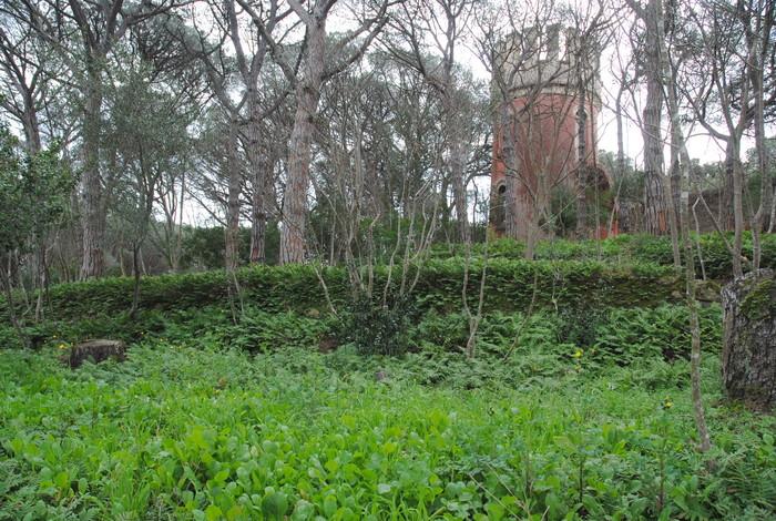 Sant Feliu prepara un pessebre vivent als Jardins del Monestir