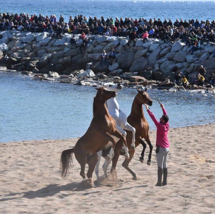 Milers de persones, a l'espectacle amb cavalls