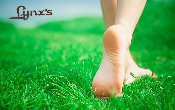Sabeu de la importància del calçat per als nostres peus?