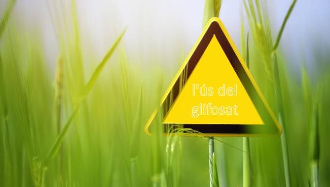 Santa Cristina d'Aro aprova abandonar l'ús del glifosat