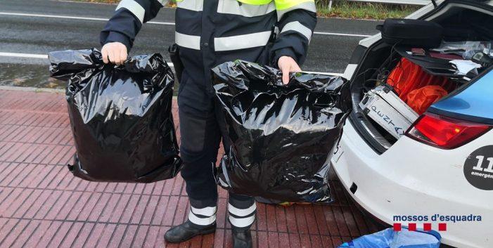 Els Mossos d'Esquadra persegueixen i detenen dos motoristes que portaven 4,7 quilograms de marihuana