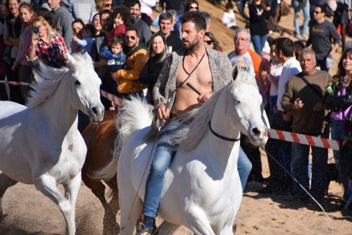 La Festivitat de Sant Antoni Abat reuneix 1500 persones a Sant Feliu de Guíxols