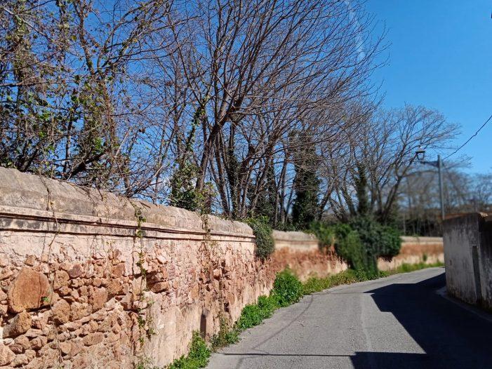 Poda d'arbres que ocupaven part de la calçada del carrer Mascanada